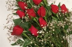 With proper care, the life of a bouquet of beautiful roses can be extended.