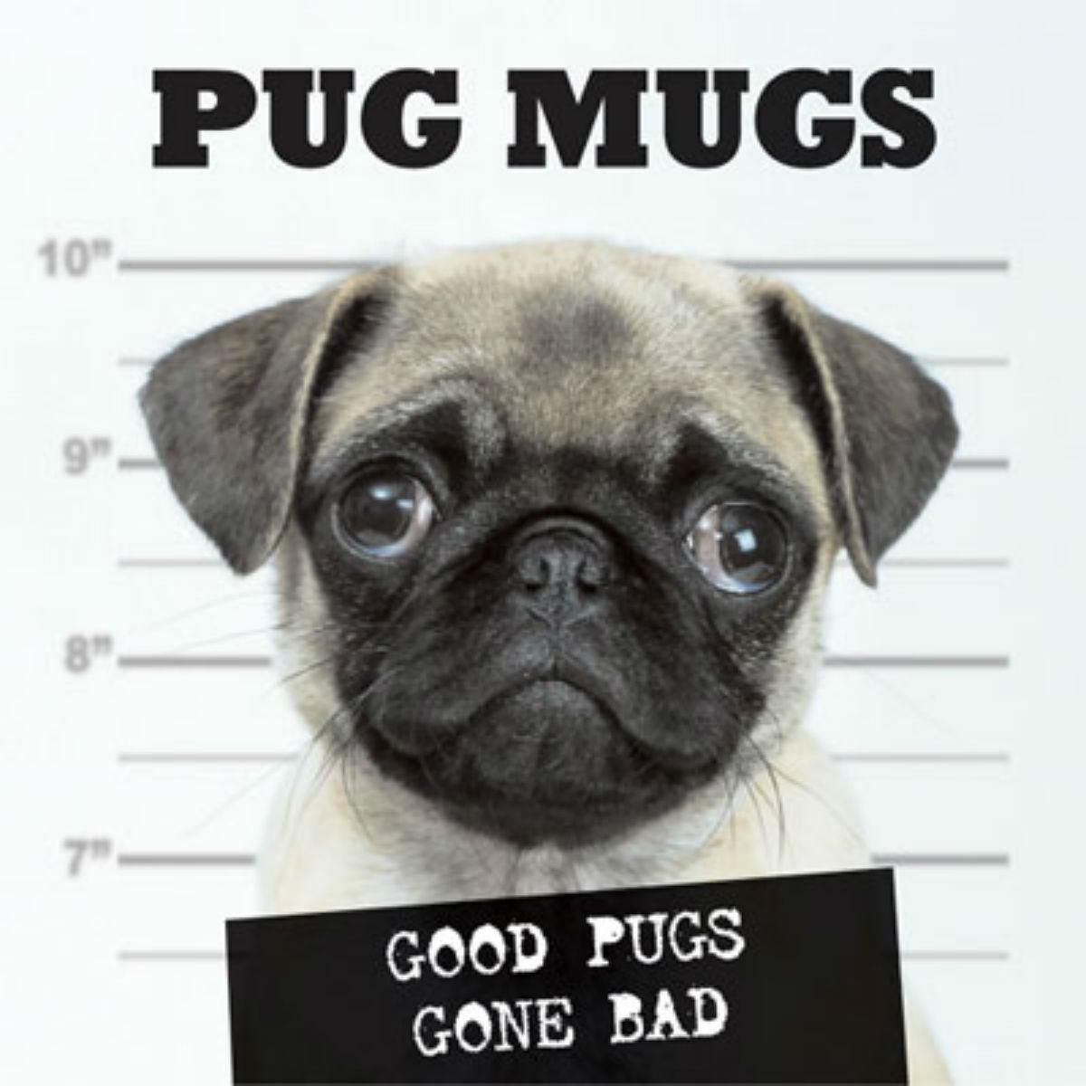 Pug Mugs Book For Humans Good Pugs Gone Bad Pug Mug Cute Pugs