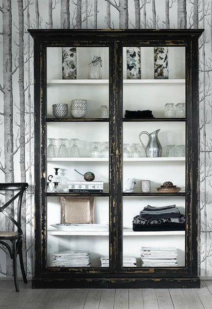 Gl Enclosed Book Shelf