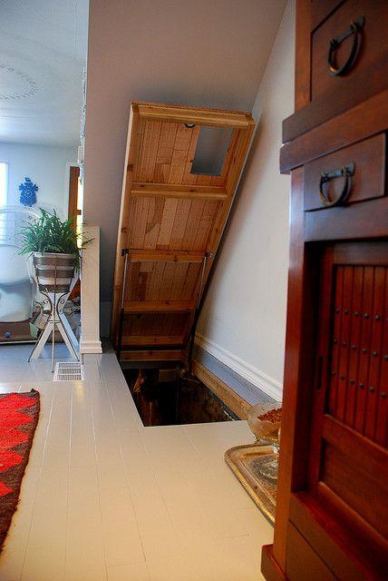 Lighting Basement Washroom Stairs: Trap Door To The Basement Stair. Provide Flush Finishing
