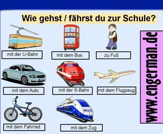 Ausgezeichnet Zellulären Transport Arbeitsblatt Pdf Bilder ...