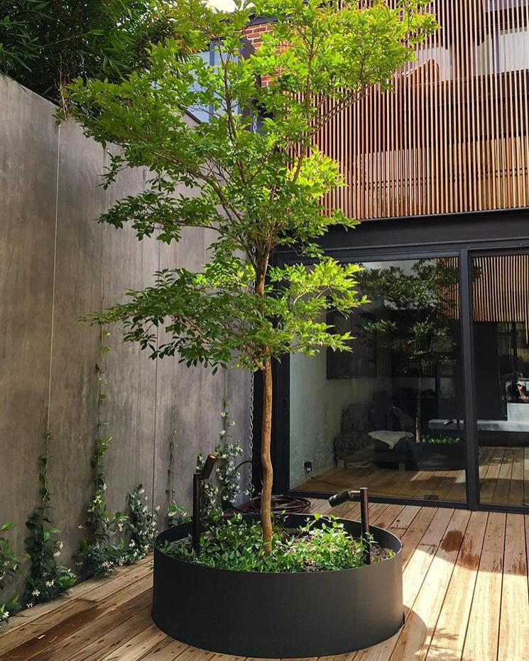 Sichtschutz Baum Rondell Outdoor