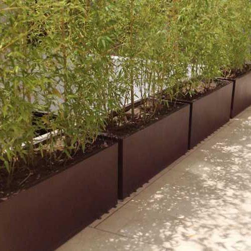 Jardineras con enredadera marca fiberland plantas y jardines pinterest jardineras - Jardineras con bambu ...