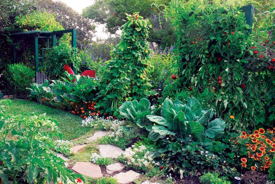 How To Plant A Square Foot Garden Mother Earth News Permaculture Gardening Edible Garden Edible Landscaping