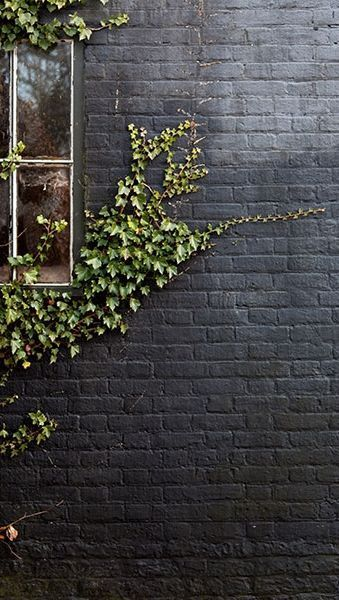 Black paint in a matte finish gives an exterior brick wall for Matte finish paint for walls