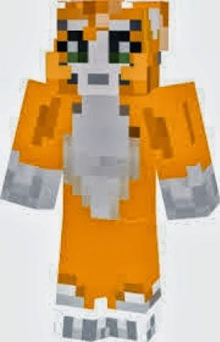 A Pictture Of Stampy Long Nose