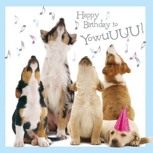 happy birthday dog quotes