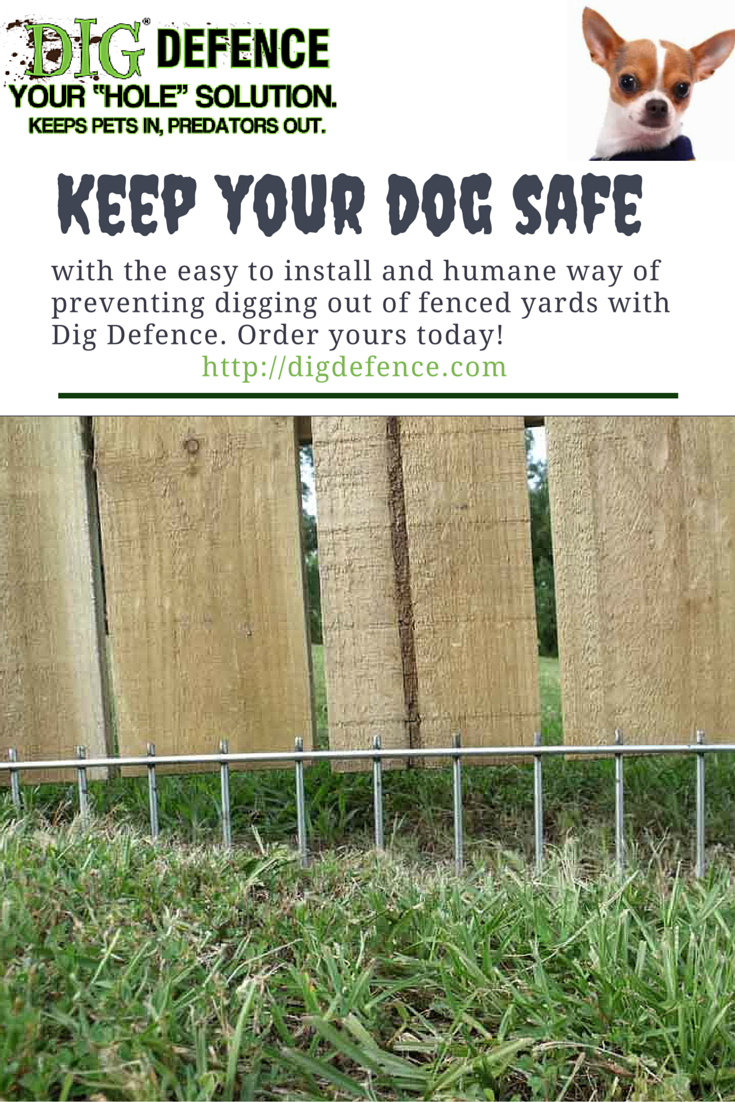 Easy To Install Humane Super Effective Get The Dig Defmence Solution For Keeping Dogs Safe And In Their Yards