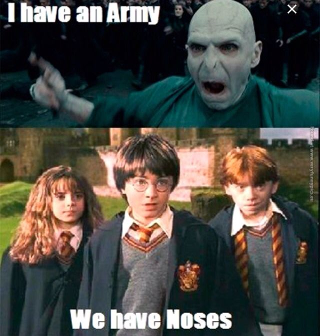 Pin By Em Miller On Harry Potter Harry Potter Memes Hilarious Harry Potter Quotes Funny Harry Potter Jokes