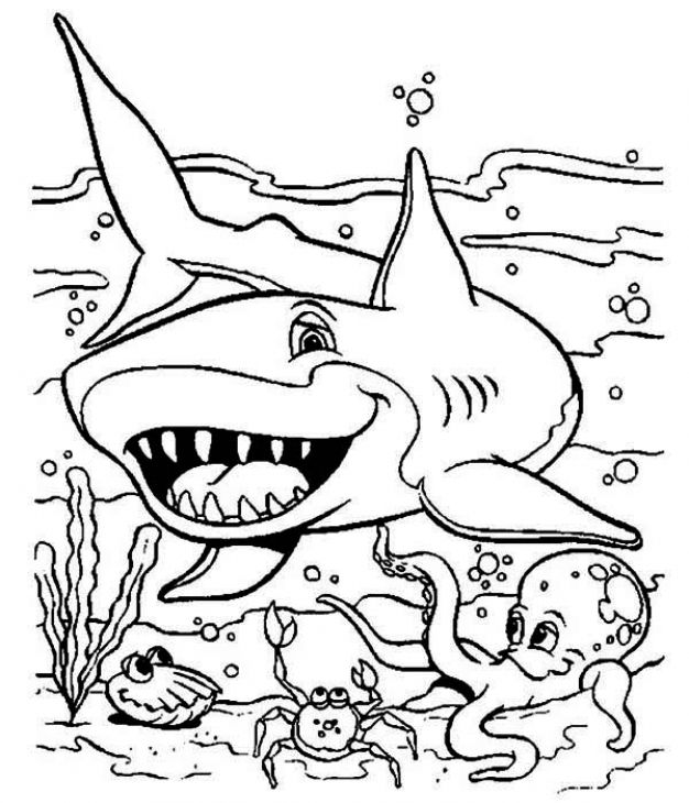 Under The Sea Animal Predator Shark Coloring Page Shark Coloring