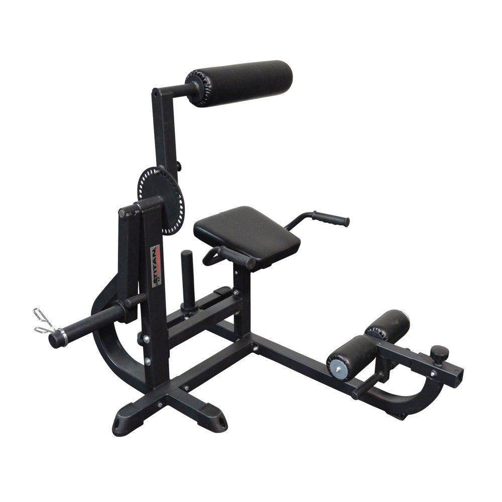 Seated Ab Back Extension Machine Back Extensions Lower Back Muscles Back Muscles