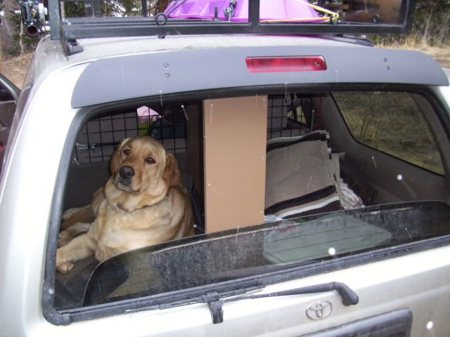 This Is The Number 1 Reason I Got A 4runner Now I Just Need A Dog