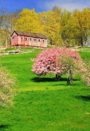 barn in the spring