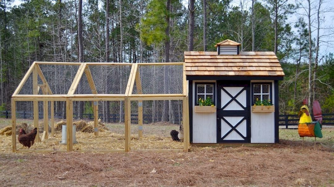 Chicken Coop Marvelous 75 Creative And Low Budget Diy Chicken
