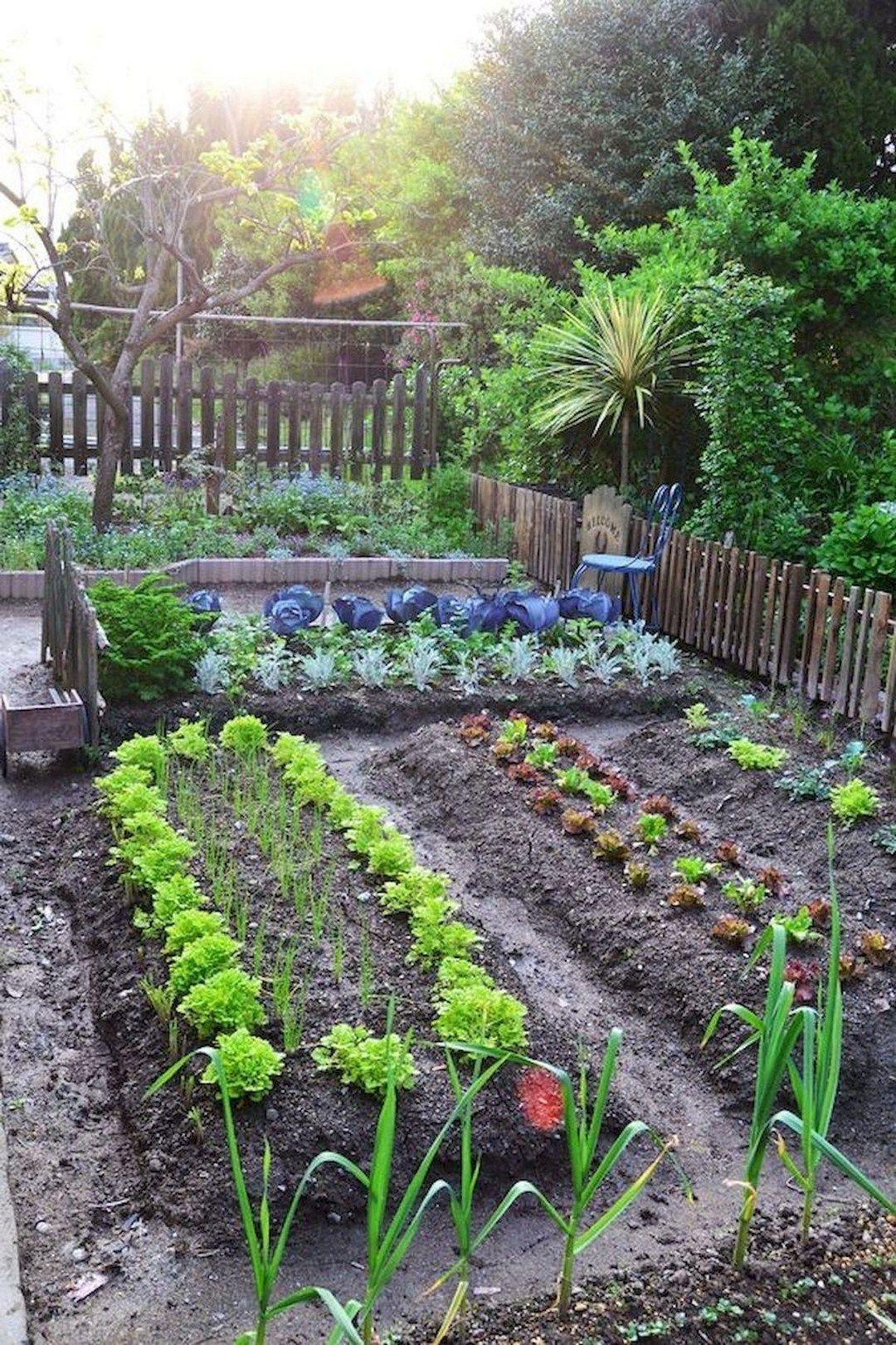Vegetable Gardening Ideas That Will Create High Yields With Zero Effort Garden Layout Home Vegetable Garden Backyard Vegetable Gardens Backyard vegetable garden ideas pictures