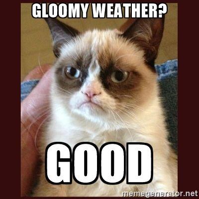 83d9519ddf96717a7cf93e2f4c0b7534 tard the grumpy cat gloomy weather? good humor pinterest