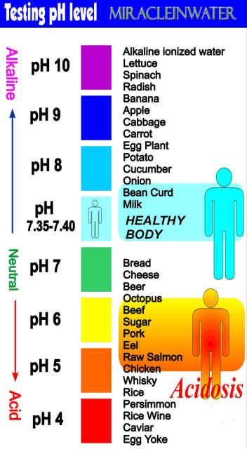 ph throughout body chart - Google Search Health Pinterest Ph - ph chart