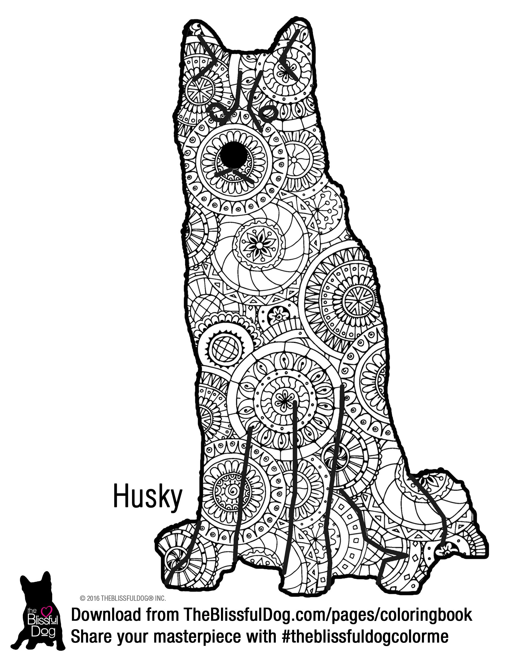 Coloring Book Dog Coloring Page Coloring Books Color