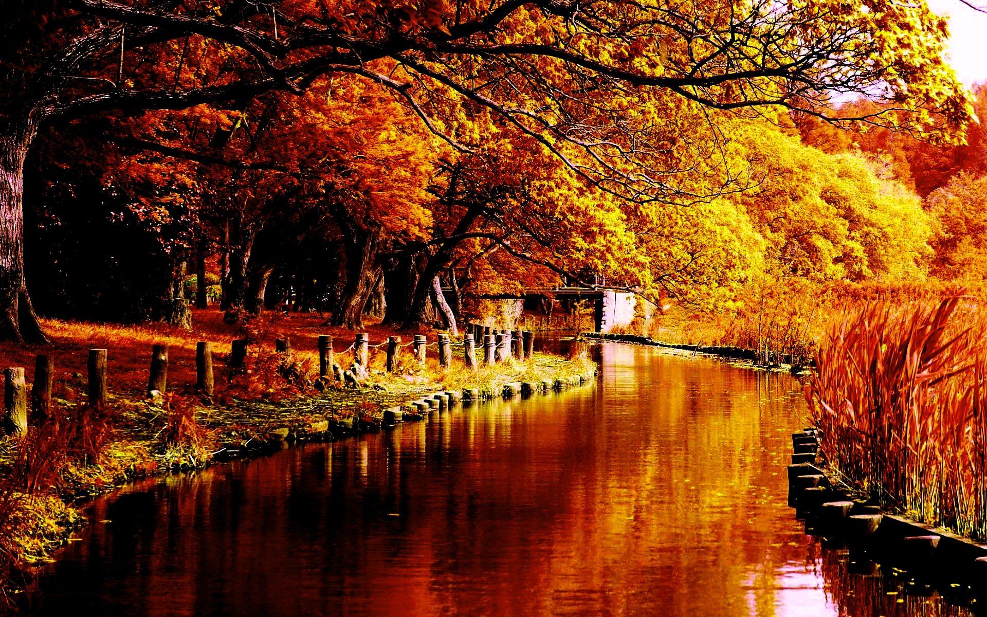 autumn dancer The Best Wallpaper Collection Autumn Hd