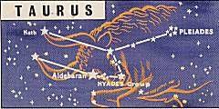 Taurus (Bull)