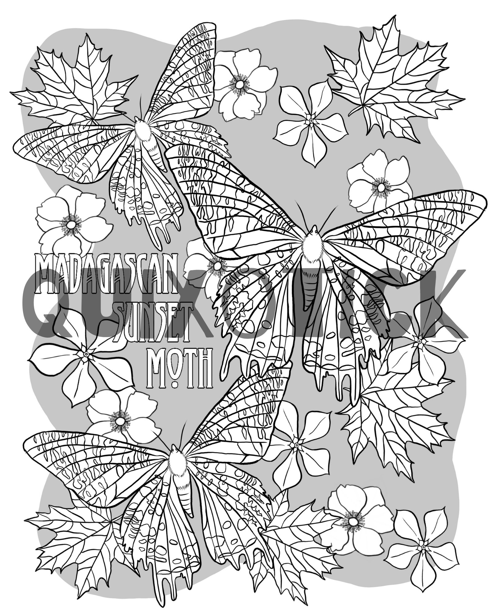 5 Moth Colouring Pages Instant Download Features 5 Moth Designs To Colour Madagascan Sunset Moth Sunset Moth Colouring Pages Hercules Moth
