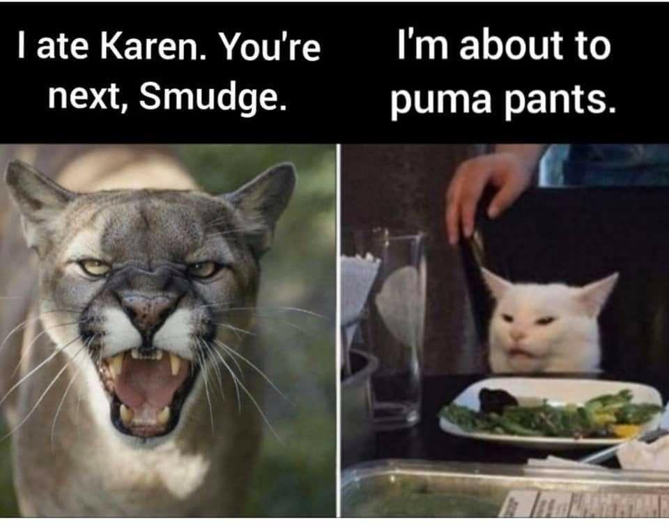 Karen Memes 2 Youtube Karen Memes Clean Funny Memes Stupid Memes