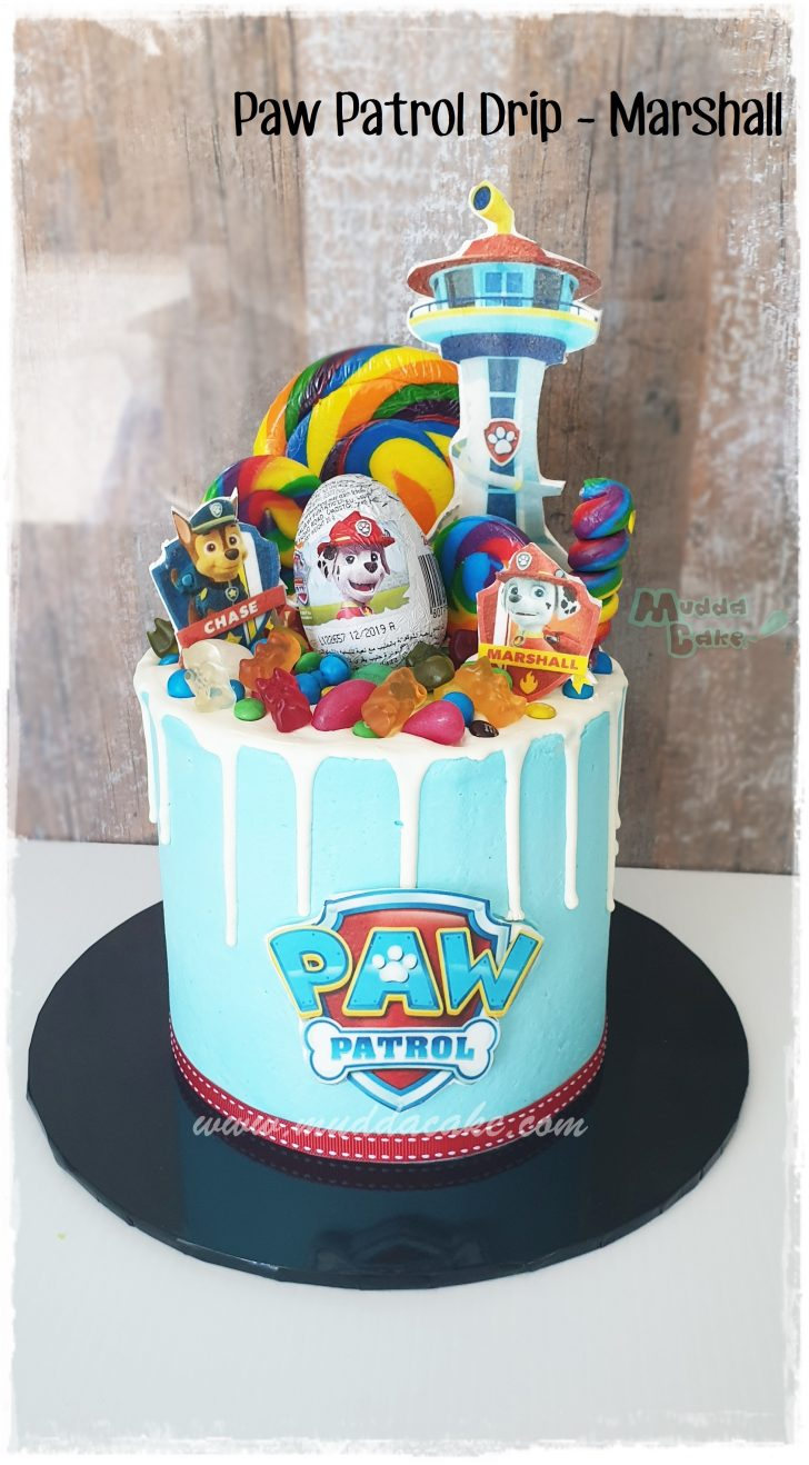 Astonishing Paw Patrol Party Bags Walmart Special Order Cake Prices Birthday Funny Birthday Cards Online Necthendildamsfinfo