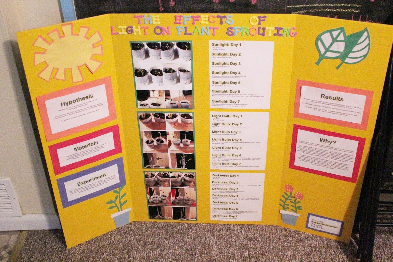 Science Fair Projects On Plants