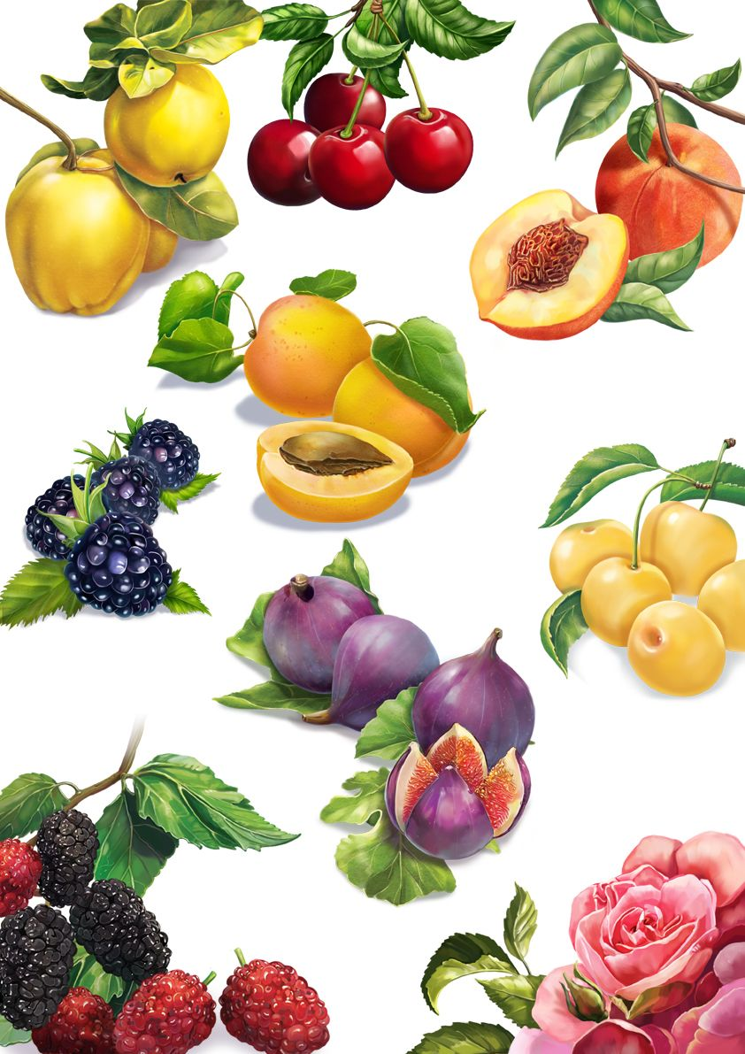 fruits on Behance caricaturas de frutas y verduras in 2019