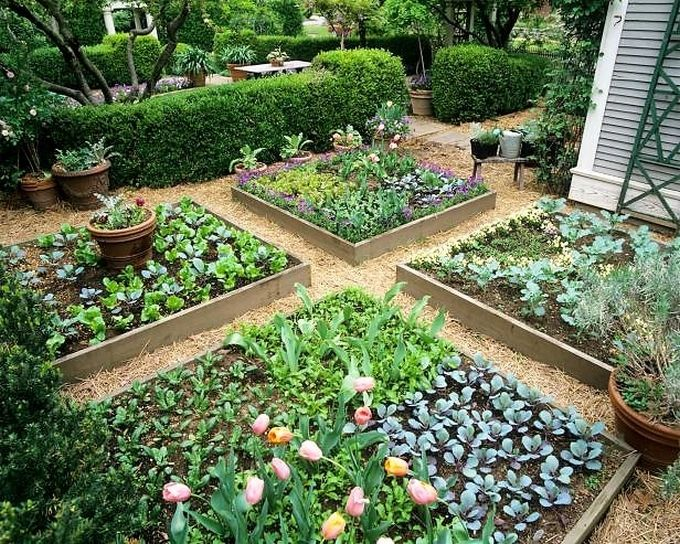 DIY Beautiful Garden Designs Ideas