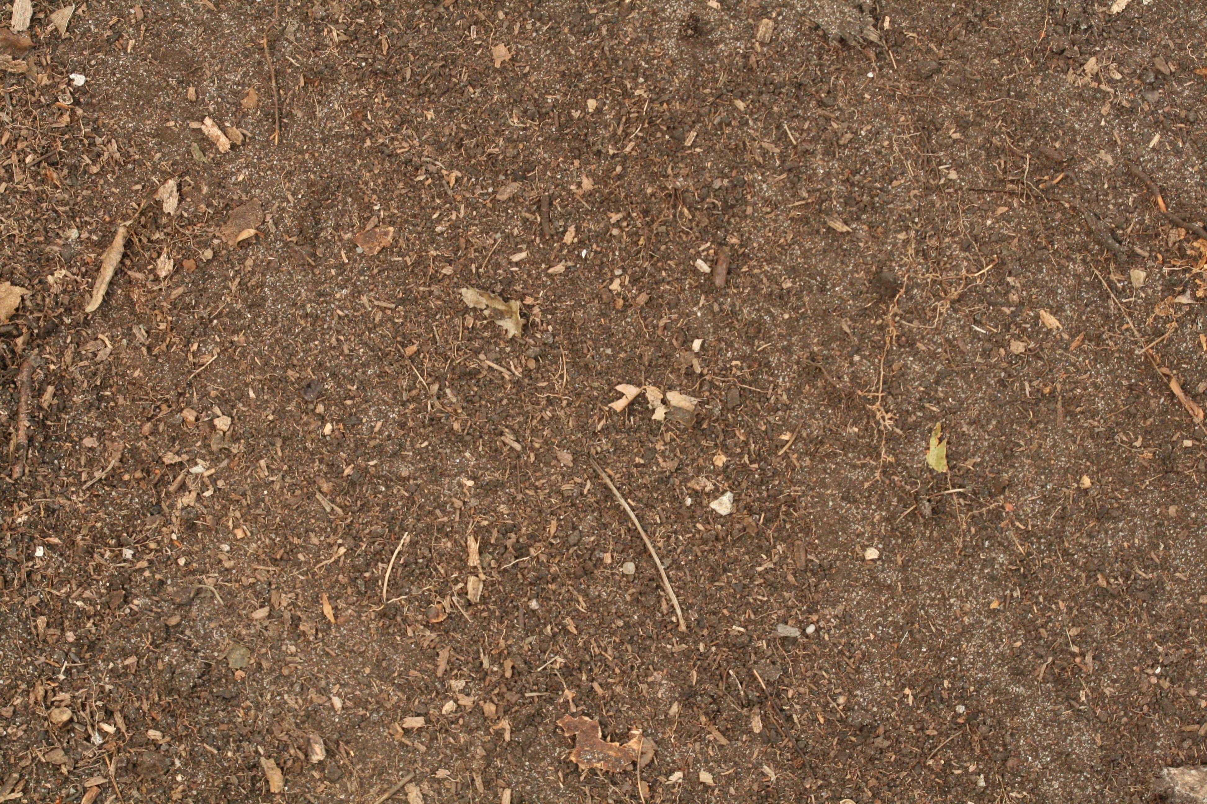 dark dirt texture seamless. Http://www.texturemate.com/image/view/1235/ · Dirt Texture ParadiseTomatoesHeavenHeavens Dark Seamless T