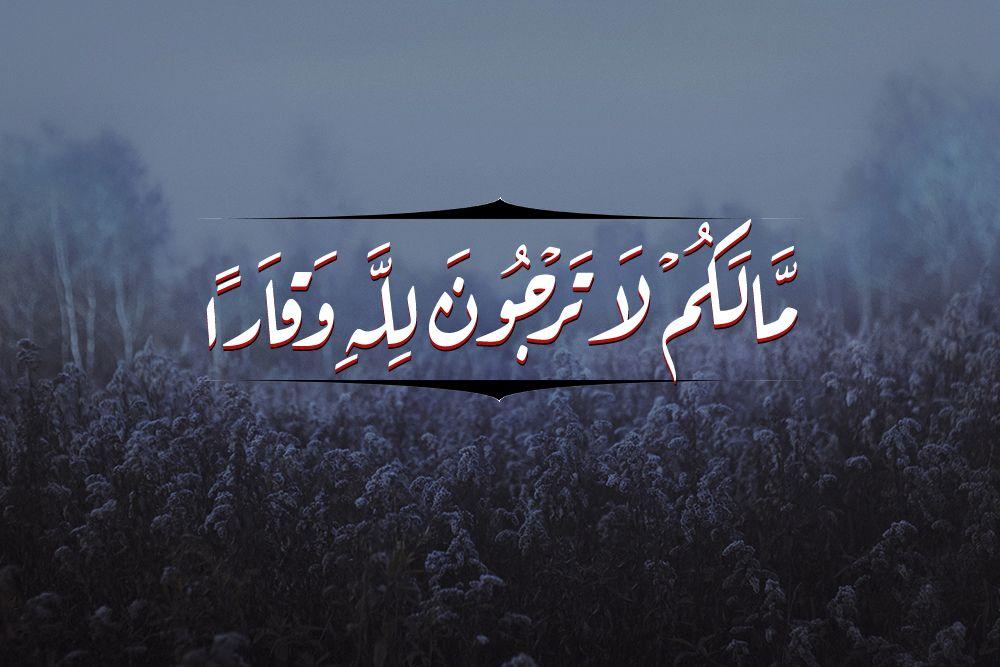 مالكم لا ترجون لله وقارا ايات قران مصحف Quran Ayat Moshaf Quran Karim Holy Quran Allah