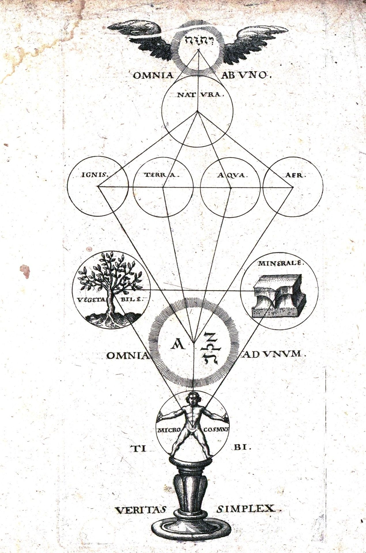 Sacred Circle Engraving Of How Life Works Paracelse