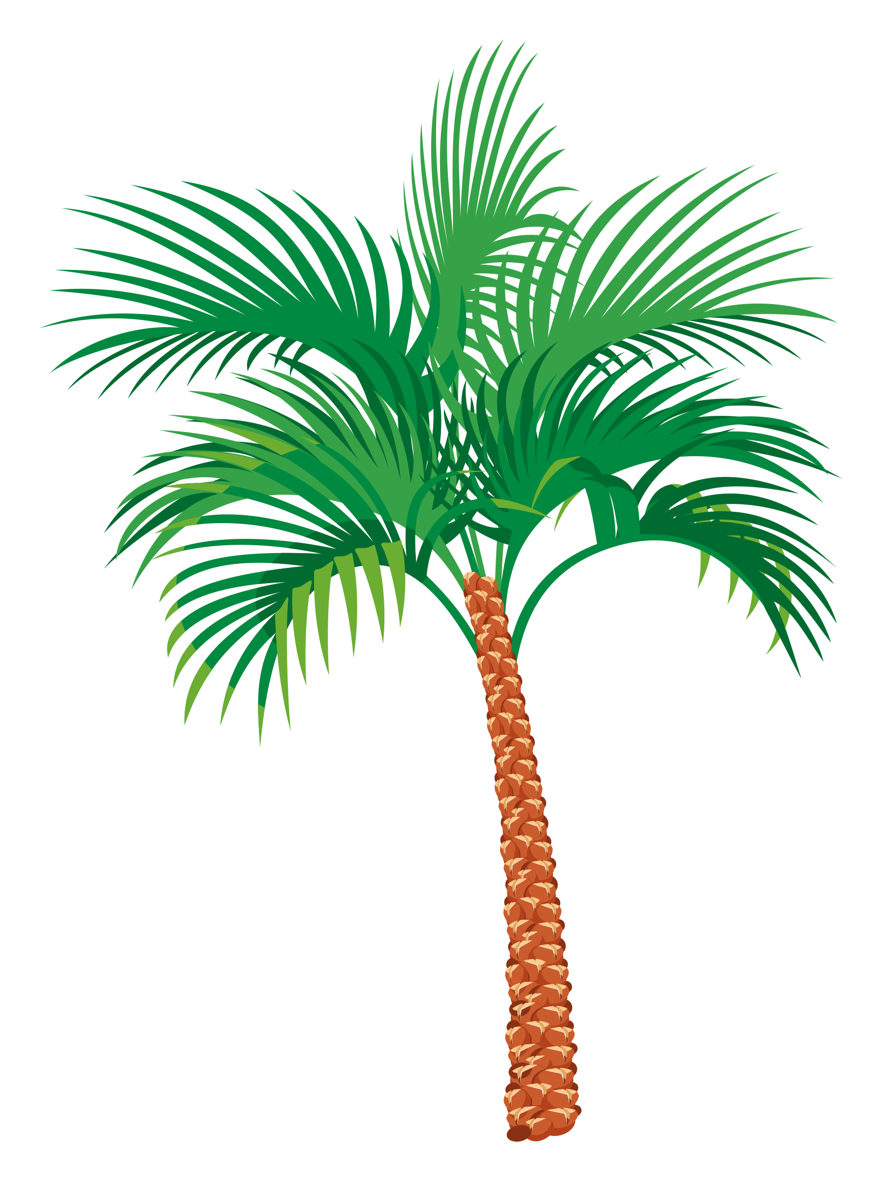 Palm Tree Palm Tree Vector Palm Tree Png Clip Art