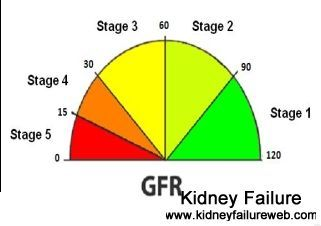 Can you raise your gfr level low gfr always indicates kidney can you raise your gfr level low gfr always indicates kidney problem and it ccuart Gallery