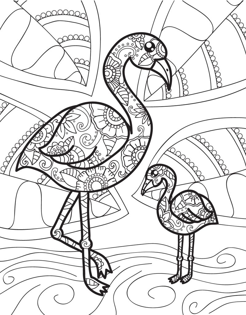 Zendoodle Coloring Baby Animals Jeanette Wummel Macmillan Flamingo Coloring Page Animal Coloring Pages Unicorn Coloring Pages [ jpg ]