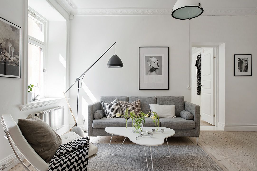 Stylish interior design living room with a gray sofa alvhem