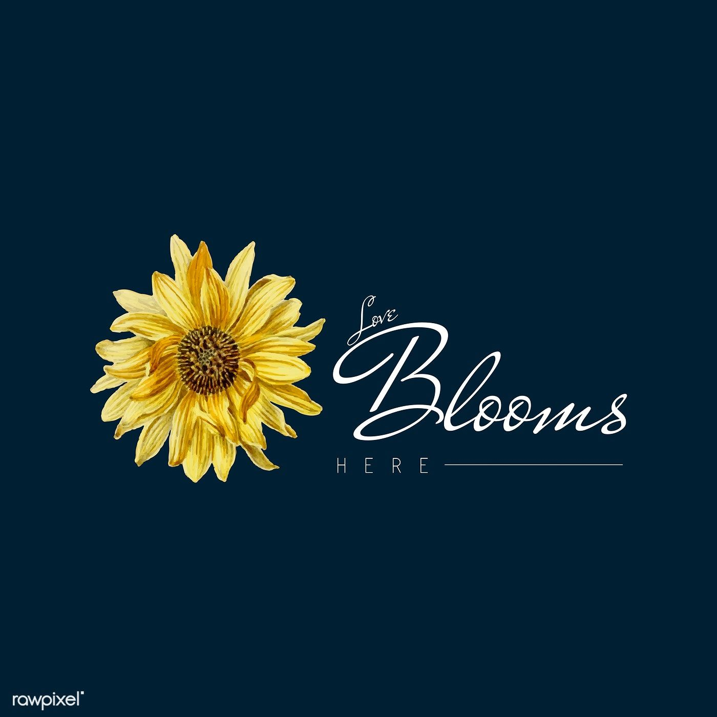 Download Love Blooms Here Svg