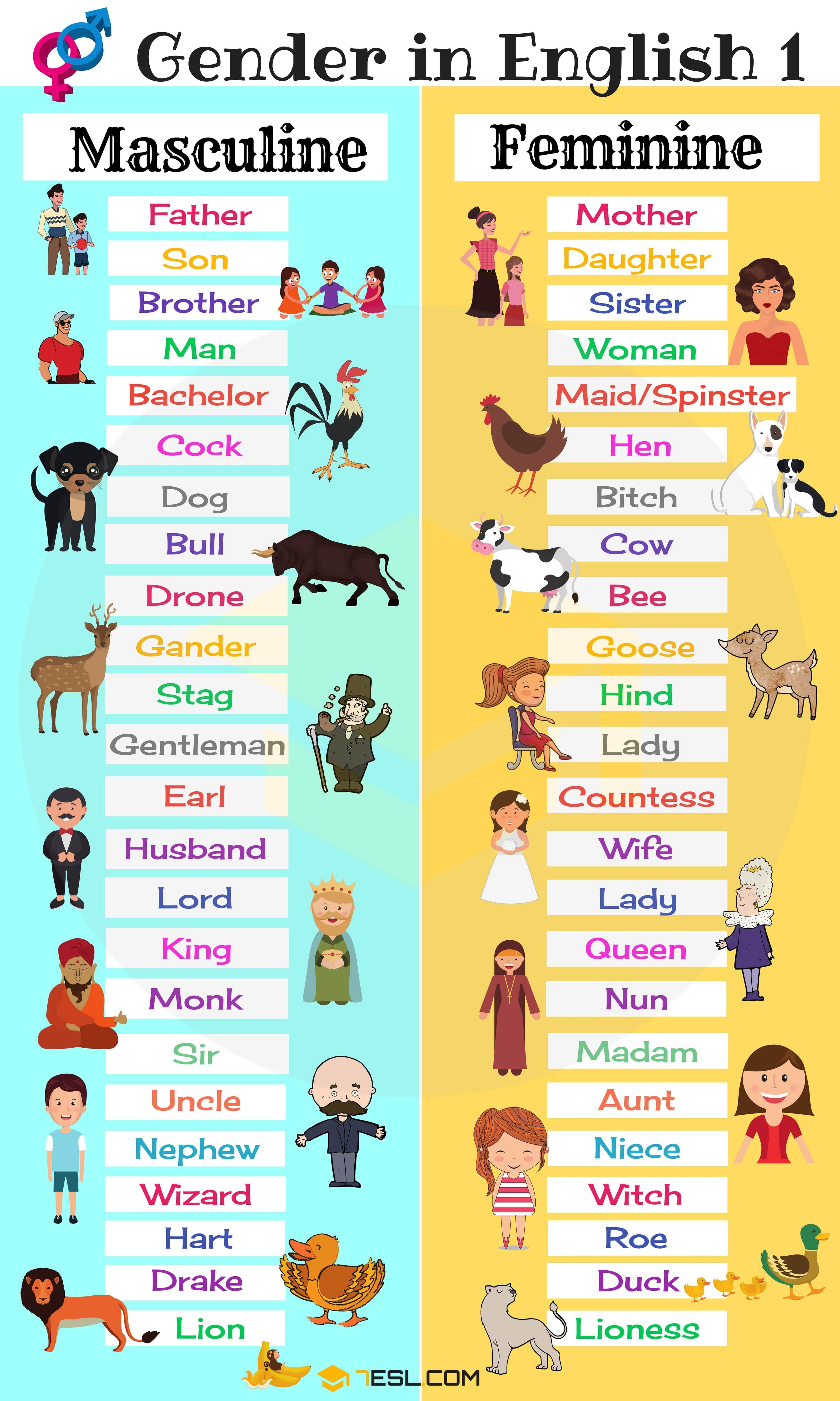 Gender of nouns masculine and feminine list in english also pengajaran rh pinterest
