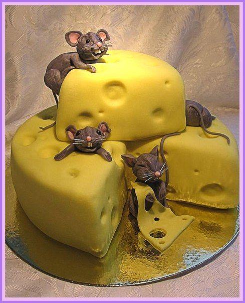 Торт мыши в сыре фото | Торт, Кафе, Сыр