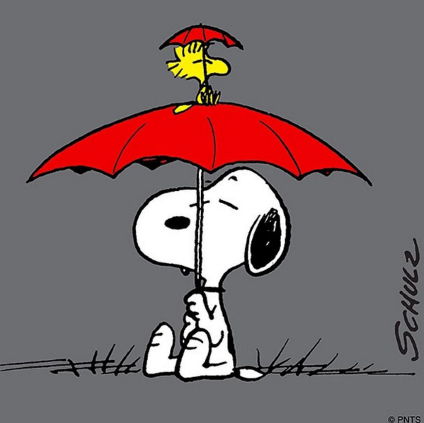 Umbrellas. | Snoopy love, Snoopy pictures, Snoopy funny