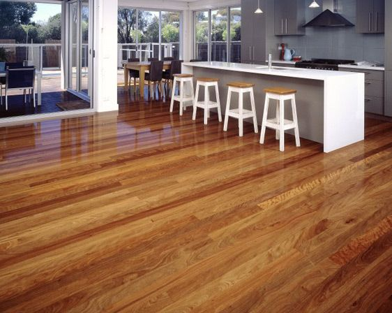 Spotted Gum Wood Flooring Google Search