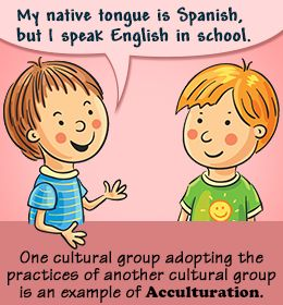 The Intriguing Process of Acculturation Explained With ...