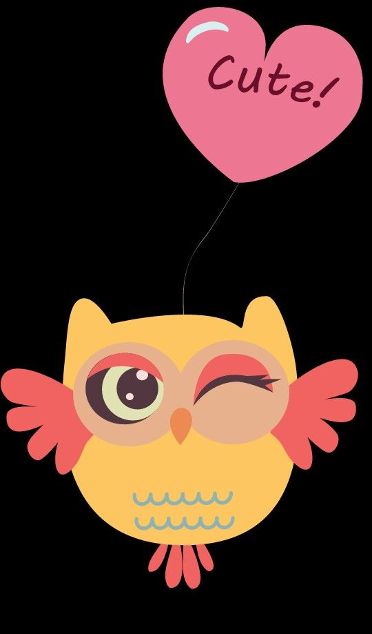 Wallpapers Iphone Cute Adorable Love Beautiful Amazing Owl