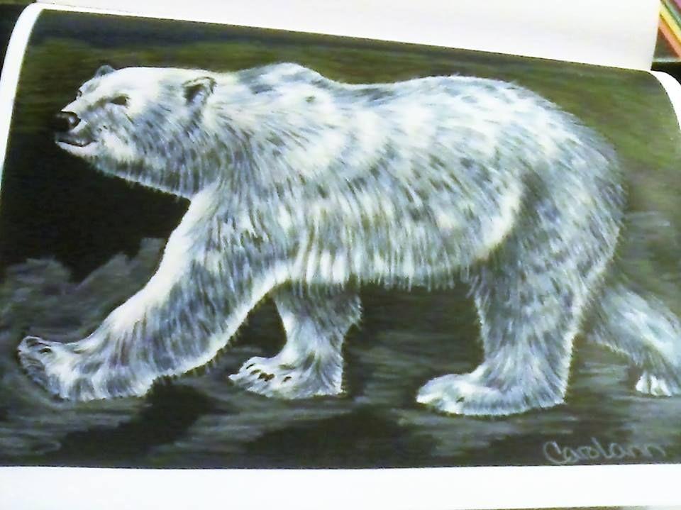 Polar Bear by Carol Blaes