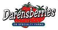 Darensberries – Santa Maria Strawberries