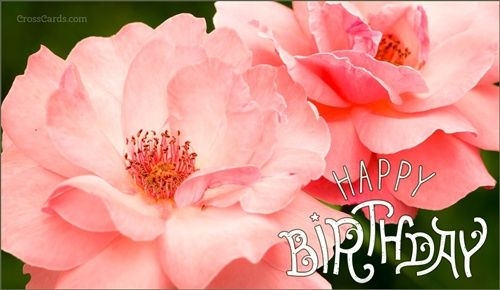 Happy birthday happy birthday to you pinterest happy send birthday ecards and online greeting cards to friends and family funny cute and christian inspirational birthday cards online bookmarktalkfo Image collections