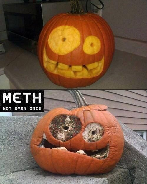 lolfactory:  Say No to Drugs Kids ☆ funny pics tumblr ☆ funny stuff