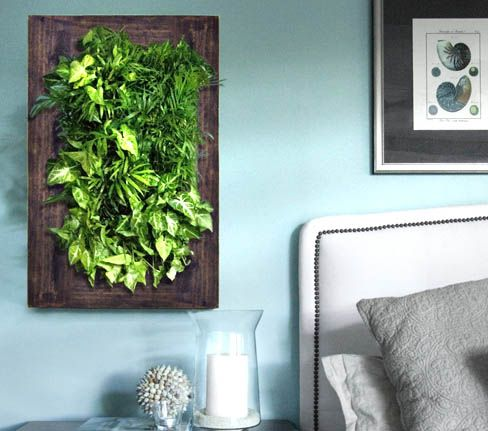 Grovert Living Art   Framed, Vertical Hanging Planter, Going To Do This  With Herbs In The Kitchen