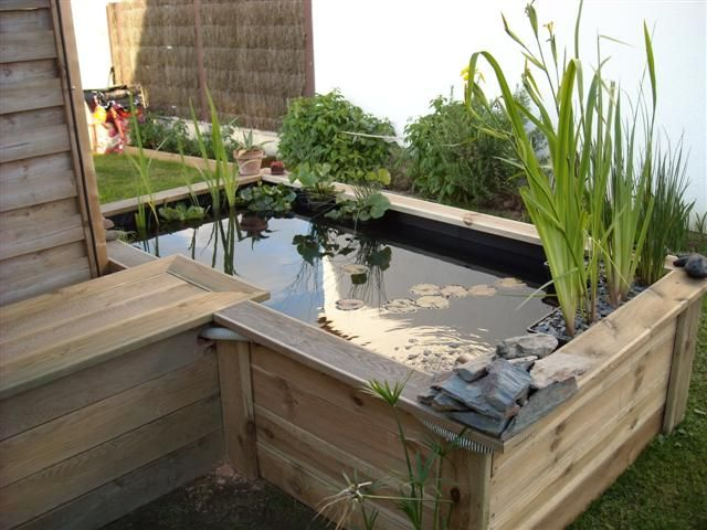 le forum de passion bassin bassin de jardin baignade naturelle technique plantes aquatiques. Black Bedroom Furniture Sets. Home Design Ideas
